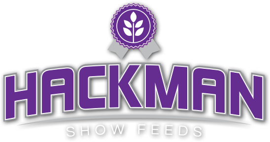 Hackman Show Feed cattle